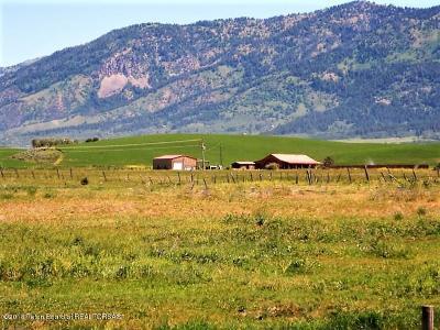 Thayne Farm & Ranch For Sale: 10189 Hwy 89