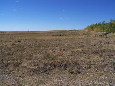 Cora Residential Lots & Land For Sale: Windy Ln