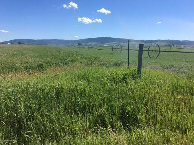 Afton WY Farm & Ranch For Sale: $625,000