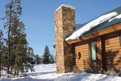 Moran Single Family Home For Sale: 14582 E Braman Rd