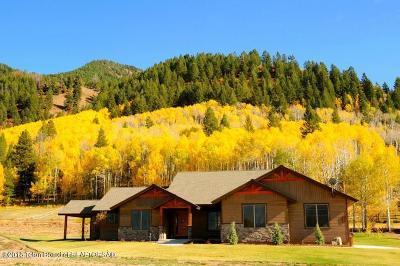 Etna Single Family Home For Sale: 363 Upper Stewart Creek