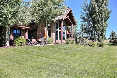 Teton Village, Tetonia, Swan Valley, Victor, Driggs, Jackson, Alta Single Family Home For Sale: 23 Springs Pkwy