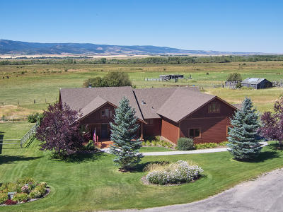 Driggs, Alta, Jackson, Tetonia, Teton Village, Victor, Swan Valley Single Family Home For Sale: 1168 River Meadows Dr