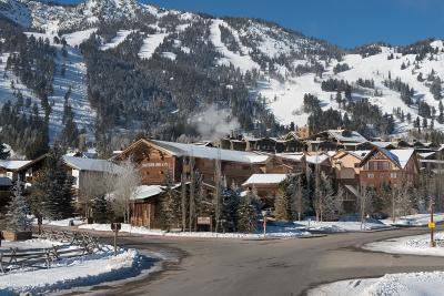 Swan Valley, Victor, Jackson, Driggs, Tetonia, Teton Village, Alta Condo/Townhouse For Sale: 7710 Granite Loop Rd #23