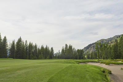 Teton County Residential Lots & Land For Sale: 15505 S Wagon Rd