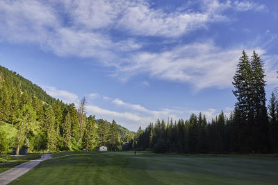 Teton County Residential Lots & Land For Sale: 15555 Tall Timber Rd