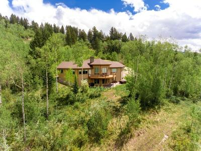Alpine Single Family Home For Sale: 60 Dancer Circle