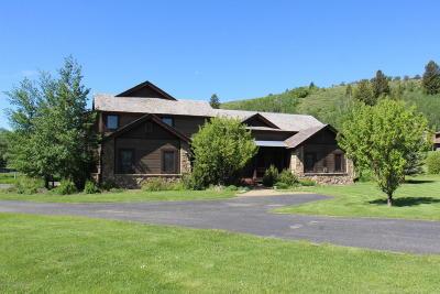Teton Village, Tetonia, Driggs, Jackson, Victor, Swan Valley, Alta Single Family Home For Sale: 4677 Paradise Springs