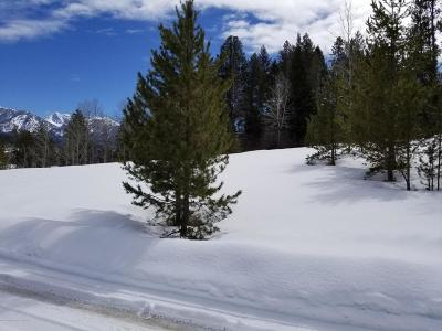 Alpine Residential Lots & Land For Sale: LOT 21 Alpine Retreat 2