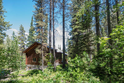 Driggs, Teton Village, Tetonia, Jackson, Victor, Swan Valley, Alta Single Family Home For Sale