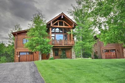 Teton Village, Tetonia, Jackson, Driggs, Alta, Swan Valley, Victor Single Family Home For Sale: 27 Bannock Cir