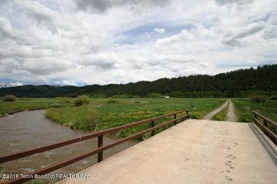 Thayne Residential Lots & Land For Sale: LOT 3 Willow Creek