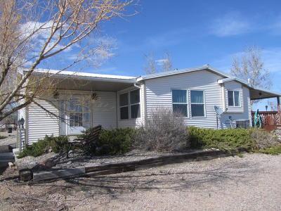 Marbleton Single Family Home For Sale: 205 Ball Lane