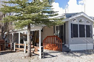 Thayne Mobile Home For Sale: 122 Buckboard Drive