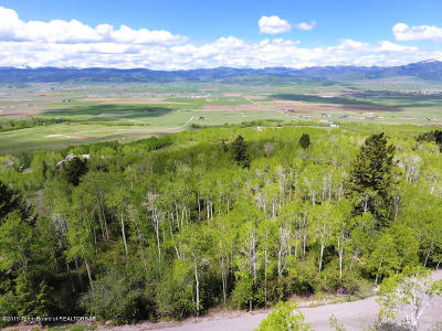 Star Valley Ranch Residential Lots & Land For Sale: P 1 L 49 Evergreen Drive