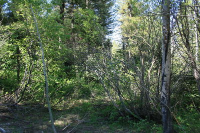 Star Valley Ranch Residential Lots & Land For Sale: SVR PL8L38 Spurwood