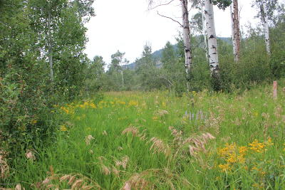 Etna, Freedom Residential Lots & Land For Sale: 24 Quaking Aspen Way