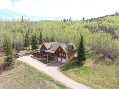 Afton Single Family Home For Sale: 637 Richardson Creek Dr