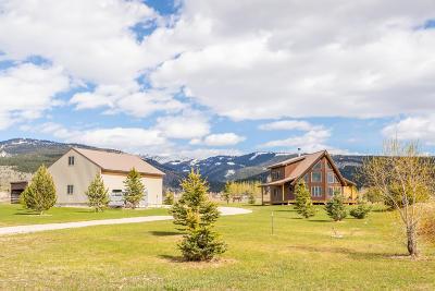 Driggs, Alta, Jackson, Tetonia, Teton Village, Victor, Swan Valley Single Family Home For Sale: 4399 Barrel Roll Trail