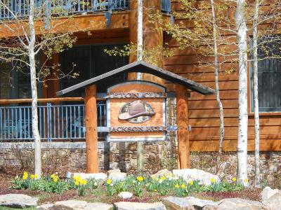Alta, Driggs, Jackson, Teton Village, Tetonia, Victor, Swan Valley Condo/Townhouse For Sale: 3340 W Cody Ln