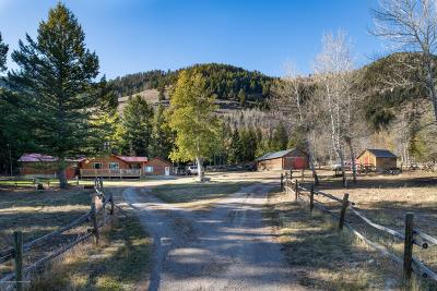 Teton County Single Family Home For Sale: 6525 W Hwy 22