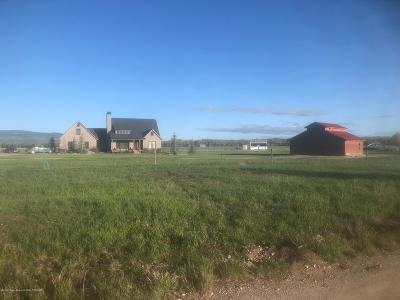 Teton Village, Tetonia, Driggs, Jackson, Victor, Swan Valley, Alta Single Family Home For Sale: 3358 Cache Vista Dr