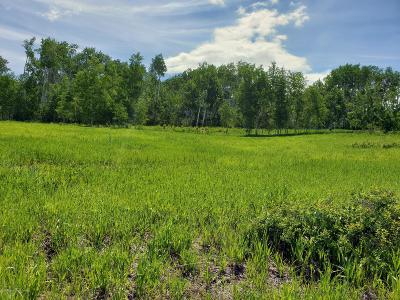 Thayne Residential Lots & Land For Sale: Muddy String Rd 117