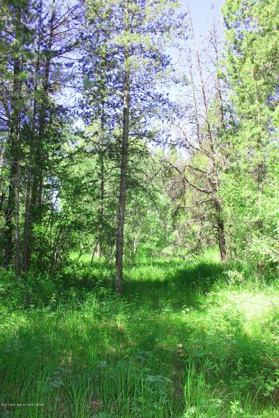 Alta Residential Lots & Land For Sale: 695 S Leigh Canyon Road