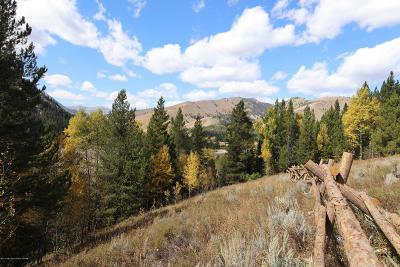 Alpine Residential Lots & Land For Sale: LOT 06 Man Peak Loop