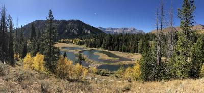 Alpine Residential Lots & Land For Sale: L 15 Virginia Peak Circle