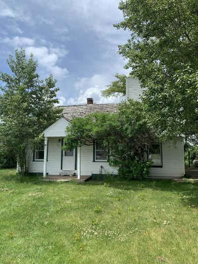 Driggs Single Family Home For Sale: 320 N Main St