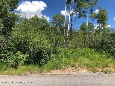 Star Valley Ranch Residential Lots & Land For Sale: PLAT 3 Lot 54 Pine St. Water Paid