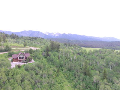 Alpine Single Family Home For Sale: 964 Trail Ridge Rd