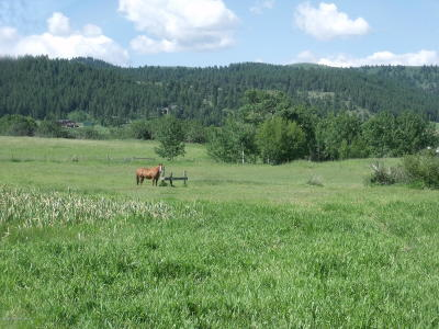 Fairview, Osmond, Smoot Residential Lots & Land For Sale: 3 Bar N Hill