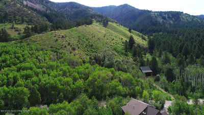 Star Valley Ranch Residential Lots & Land For Sale: LOT 8 Evergreen