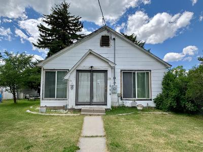 Afton Single Family Home For Sale: 254 Lincoln St