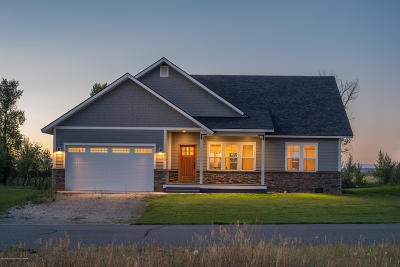 Driggs Single Family Home For Sale: 832 Palisade Trail