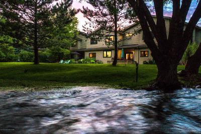 Teton Village, Tetonia, Driggs, Jackson, Victor, Swan Valley, Alta Condo/Townhouse For Sale: 910 Powderhorn Lane #6