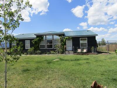 Swan Valley, Victor, Jackson, Driggs, Tetonia, Teton Village, Alta Single Family Home For Sale: 3674 S 600 W.