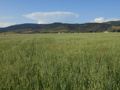 Smoot WY Residential Lots & Land For Sale: $129,000