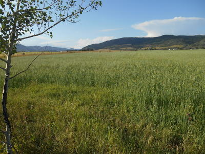 Smoot WY Residential Lots & Land For Sale: $145,000