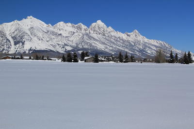 Teton County Residential Lots & Land For Sale: 6574 Ryegrass