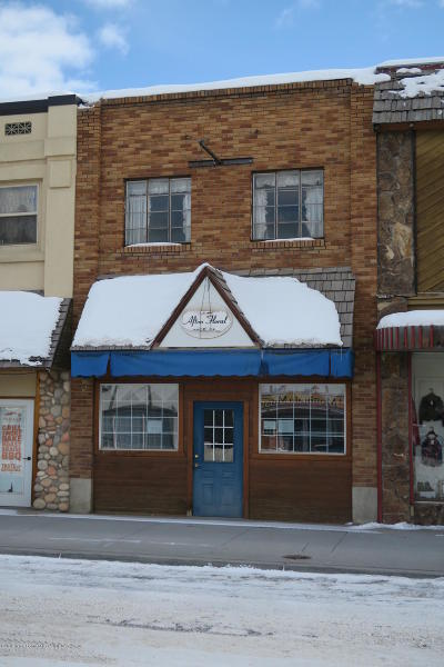 Afton Commercial For Sale: 425 S Washington