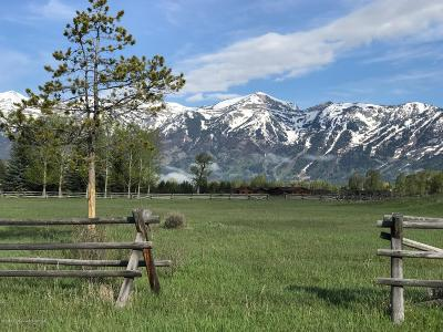 Teton County Residential Lots & Land For Sale: 220 Huckleberry Drive