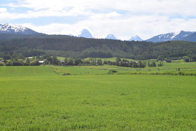 Teton County Residential Lots & Land For Sale: 1745 Alta North Road