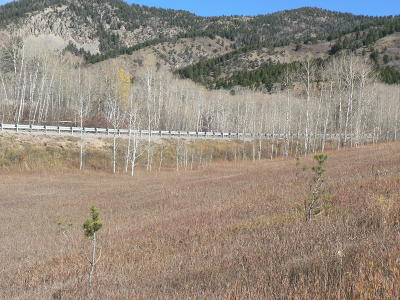 Star Valley Ranch WY Residential Lots & Land For Sale: $25,500