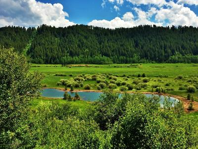 Thayne Farm & Ranch For Sale: NYA LOT 4 Narrows Willow Creek Road Cr 128