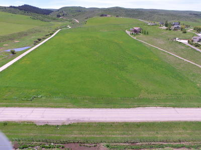 Afton Residential Lots & Land For Sale: WY 238 Corner Of Harmony Cr Rd.