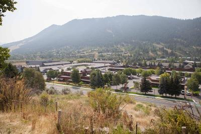 Teton Village, Tetonia, Jackson, Driggs, Alta, Swan Valley, Victor Single Family Home For Sale: 785 W Broadway