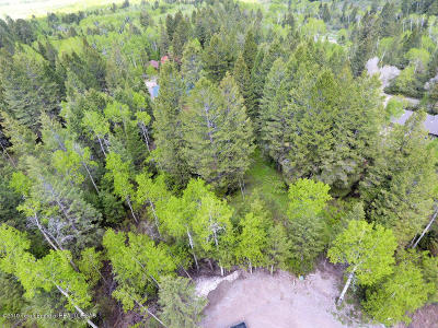 Star Valley Ranch Residential Lots & Land For Sale: P 8 L 35 Spurwood Drive